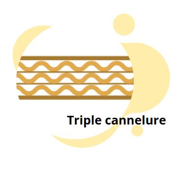 SCHEMA TRIPLE CANNELURE